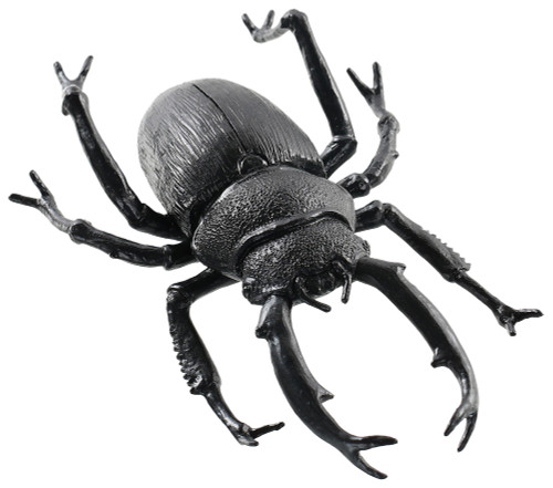 Black Beetle 8 Inches