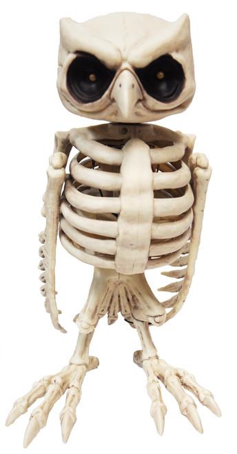Owl Skeleton Animated