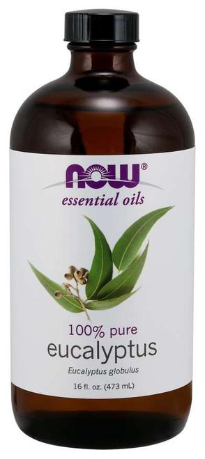 Eucalyptus Globulus Oil - 16 fl. oz.