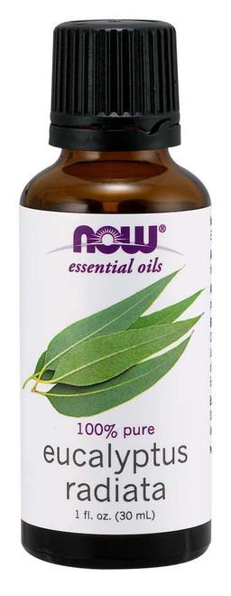 Eucalyptus Radiata Oil - 1 fl. oz.