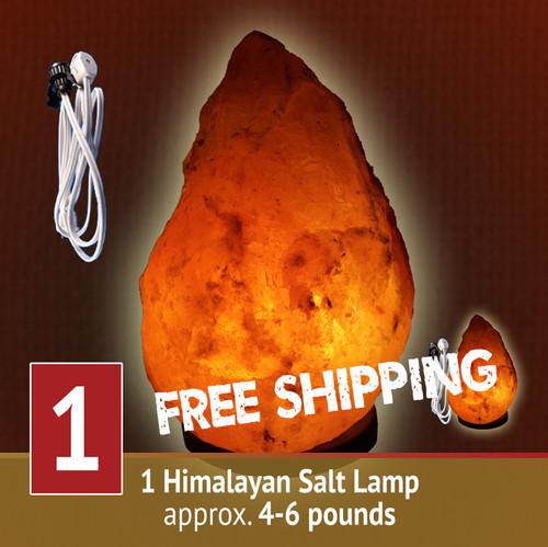 Himalayan Salt Lamp - 4-6 lb size
