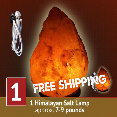 Himalayan Salt Lamp - 7-9 lb size