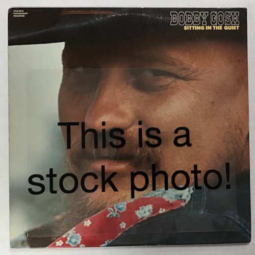 Bobby Gosh - Sitting in the Quiet - vinyl record LP