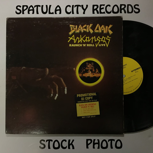 Black Oak Arkansas - Raunch 'N' Roll - PROMO - vinyl record LP
