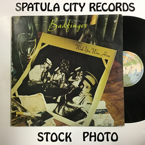 Badfinger - Wish You Were Here - IMPORT - vinyl record LP