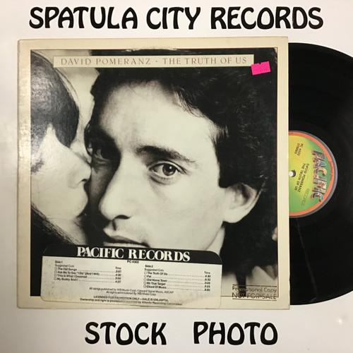 David Pomeranz - The Truth of Us - vinyl reccord LP