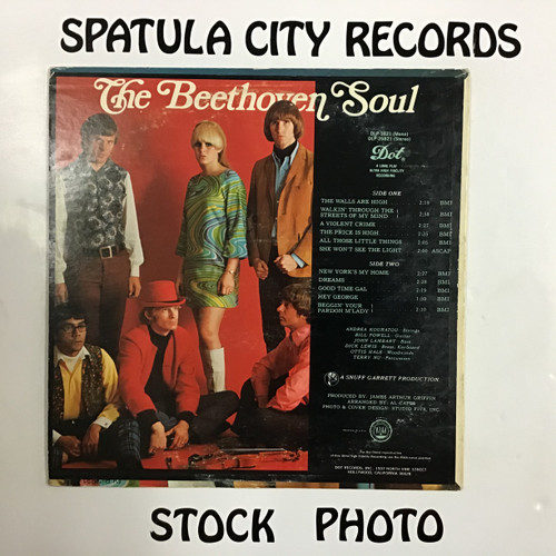 Beethoven Soul, The - The Beethoven Soul - vinyl record LP