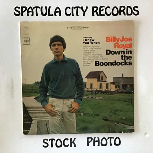 Billy Joe Royal - Down in the Boondocks - vinyl record LP