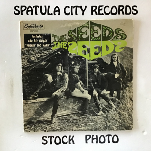 Seeds, The - The Seeds - vinyl record LP