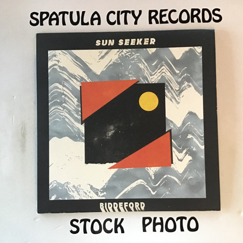 Sun Seeker - Biddeford - vinyl record LP