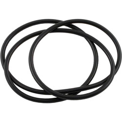 Filter Lid ORing For Waterway Clearwater Filters 805-0460