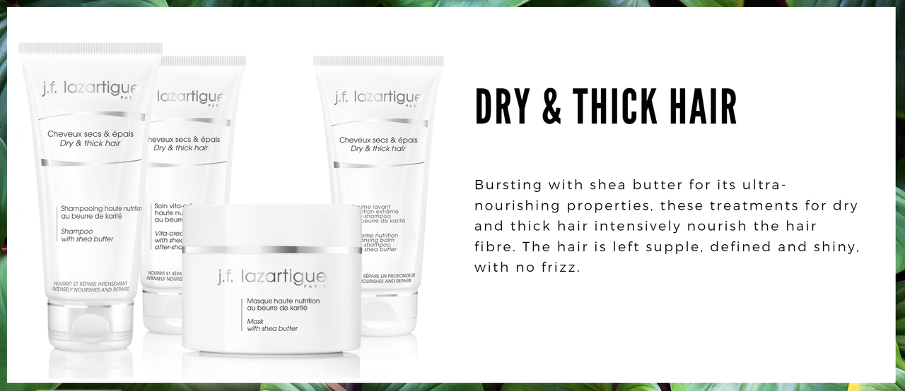 Shea Butter - Dry Thick, Curly Hair