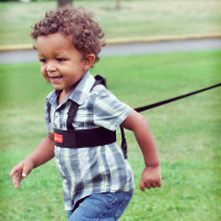 Diono Sure Steps™ Security Harness up close