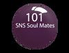 SNS Powder Color 1 oz - #101 SNS SOUL MATES