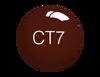 SNS Powder Color 1 oz - #CT7