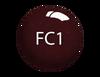 SNS Powder Color 1 oz - #FC01