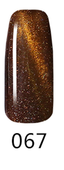 NICo Cateye 3D Gel Polish 0.5 oz - Color #067