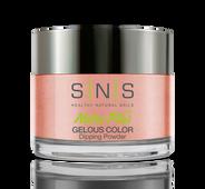 SNS Powder Color 1 oz - #NC16