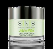 SNS Powder Color 1 oz - #AC11