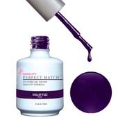PMS31 - Violet Fizz.jpeg