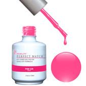 PMS26 - Pink Gin.jpeg