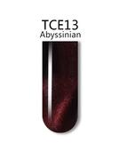 iGel 3D Cat Eye Gel Polish - #TCE13 Abyssinian .5 oz