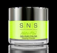 SNS Powder Color 1.5 oz - #384 FIONA APPLE