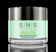 SNS Powder Color 1.5 oz - #BC02 PLURIBUS UNUM