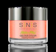 SNS Powder Color 1.5 oz - #HH34 Monkey Forest