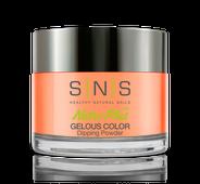 SNS Powder Color 1.5 oz - #LG05 Crash & Burn - Neon