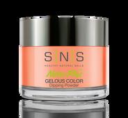 SNS Powder Color 1.5 oz - #BD09 ISLE OF CAPRIS
