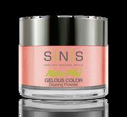 SNS Powder Color 1.5 oz - #BD19 ANTIQUE KIMONO