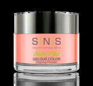 SNS Powder Color 1.5 oz - #SG07 HATTERAS