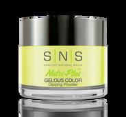 SNS Powder Color 1.5 oz - #SG09 FEM GULLY