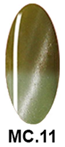 NICo Cateye 3D Gel Polish 0.5 oz - MOOD CHANGING - Color #MC.11