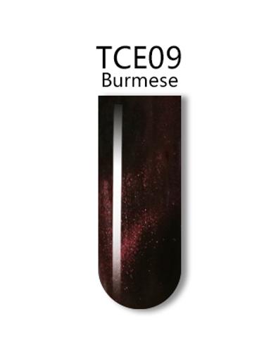 iGel 3D Cat Eye Gel Polish - #TCE09 Burmese .5 oz