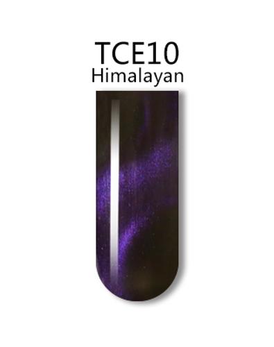 iGel 3D Cat Eye Gel Polish - #TCE10 Himalayan .5 oz