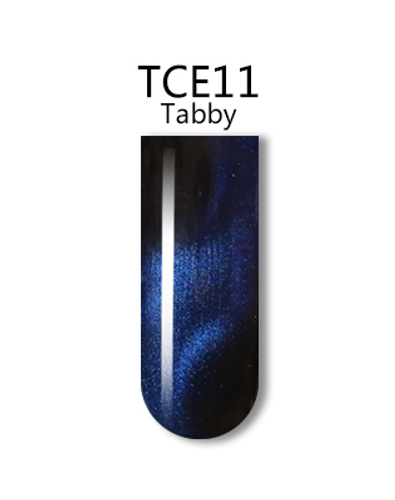 iGel 3D Cat Eye Gel Polish - #TCE11 Tabby .5 oz