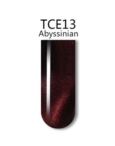 iGel 3D Cat Eye Gel Polish - #TCE13 Abyssinian .5 oz