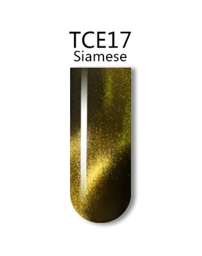 iGel 3D Cat Eye Gel Polish - #TCE17 Siamese .5 oz