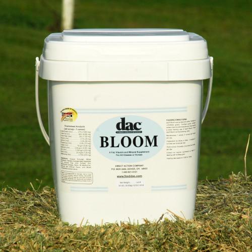 DAC Bloom- 20lb