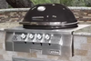 Primo Oval G 420 Gas Grill Head