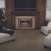 Napoleon Inspiration ZC Gas Fireplace Insert