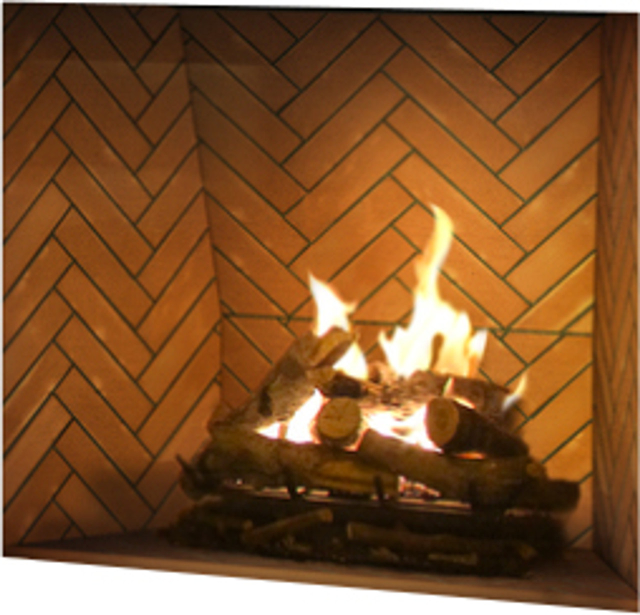 Ortal Frameless Gas Fireplace Traditional Clear View