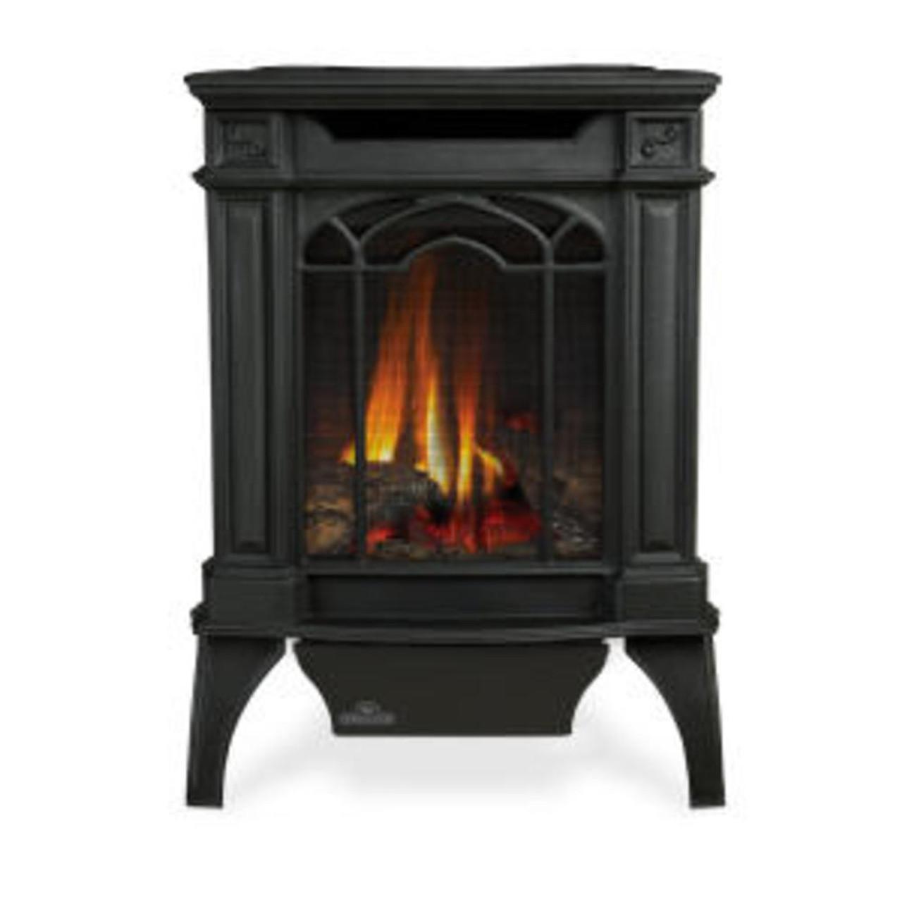 Napoleon Arlington™ Cast Iron Direct Vent Gas Fireplace - Millivolt Ignition | Metallic Black