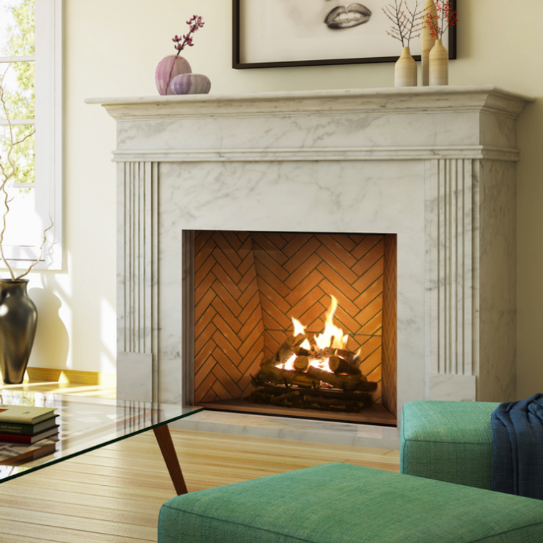 Ortal Frameless Gas Fireplace Traditional Clear View ... on Embers Fireplaces & Outdoor Living id=67886