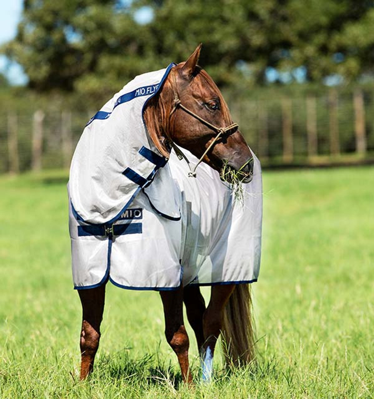 Mio Fly Rug Bronze Navy Do Trot In Tack Shop