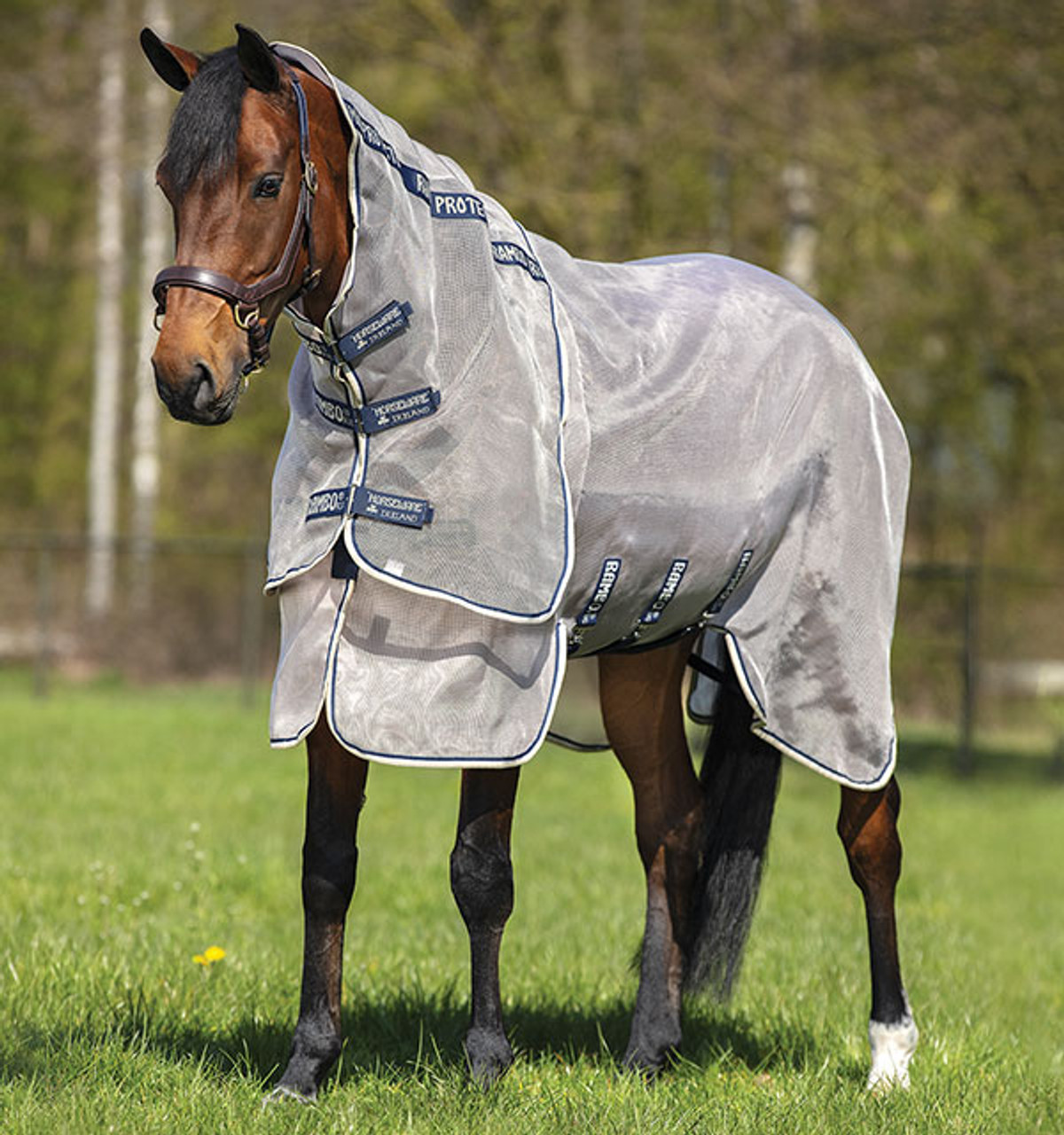 Rambo Protector Oatmeal Navy Do Trot In Tack Shop