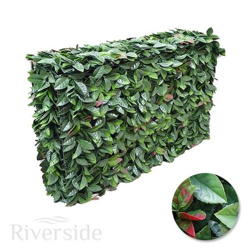 WonderWal Artificial Topiary - American Beech 100x25x75cm