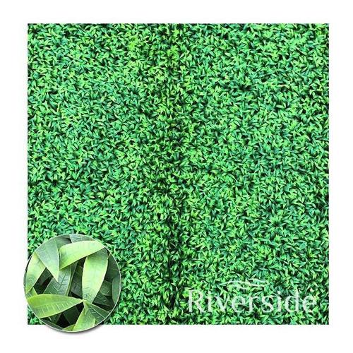 WonderWal Artificial Hedge Screening - Haworthia 100x100cm